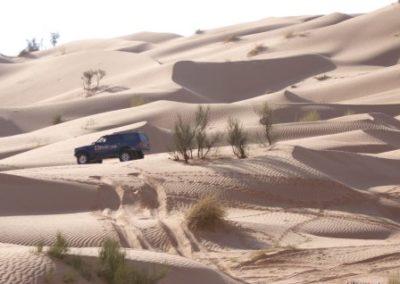 Tunisie 2007 CIMG2563